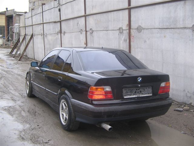1993 bmw 316i pictures for sale