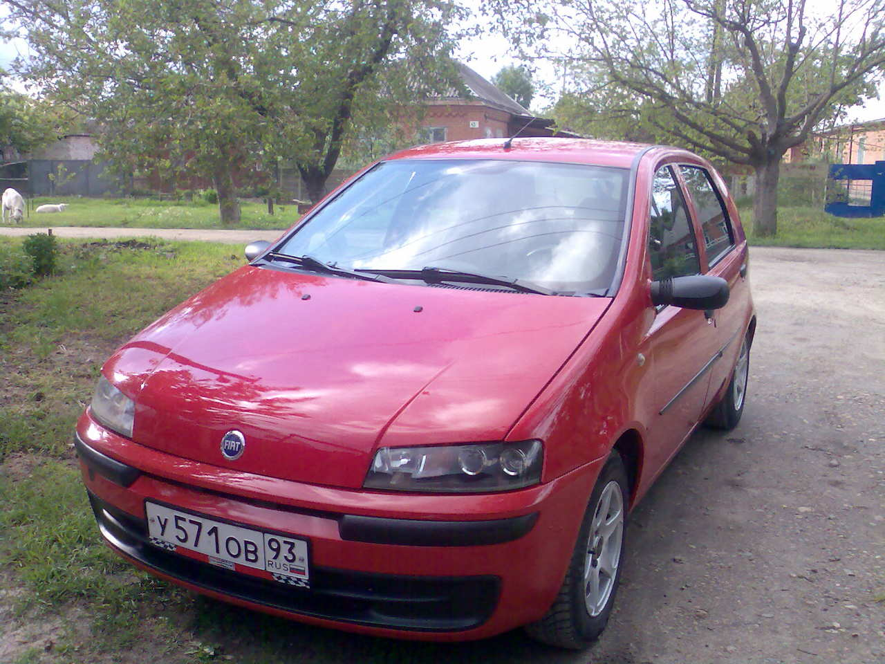 1999 fiat punto photos 1 2 gasoline ff manual for sale. Black Bedroom Furniture Sets. Home Design Ideas
