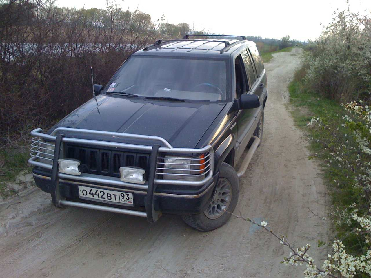 1995 jeep grand cherokee pictures 5200cc gasoline automatic for. Cars Review. Best American Auto & Cars Review
