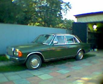 Mercedez Benz on 1980 Mercedes Benz 300d Pics   Car Pictures Gallery