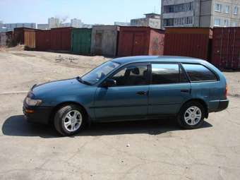 1996 toyota corolla wagon for sale. Black Bedroom Furniture Sets. Home Design Ideas