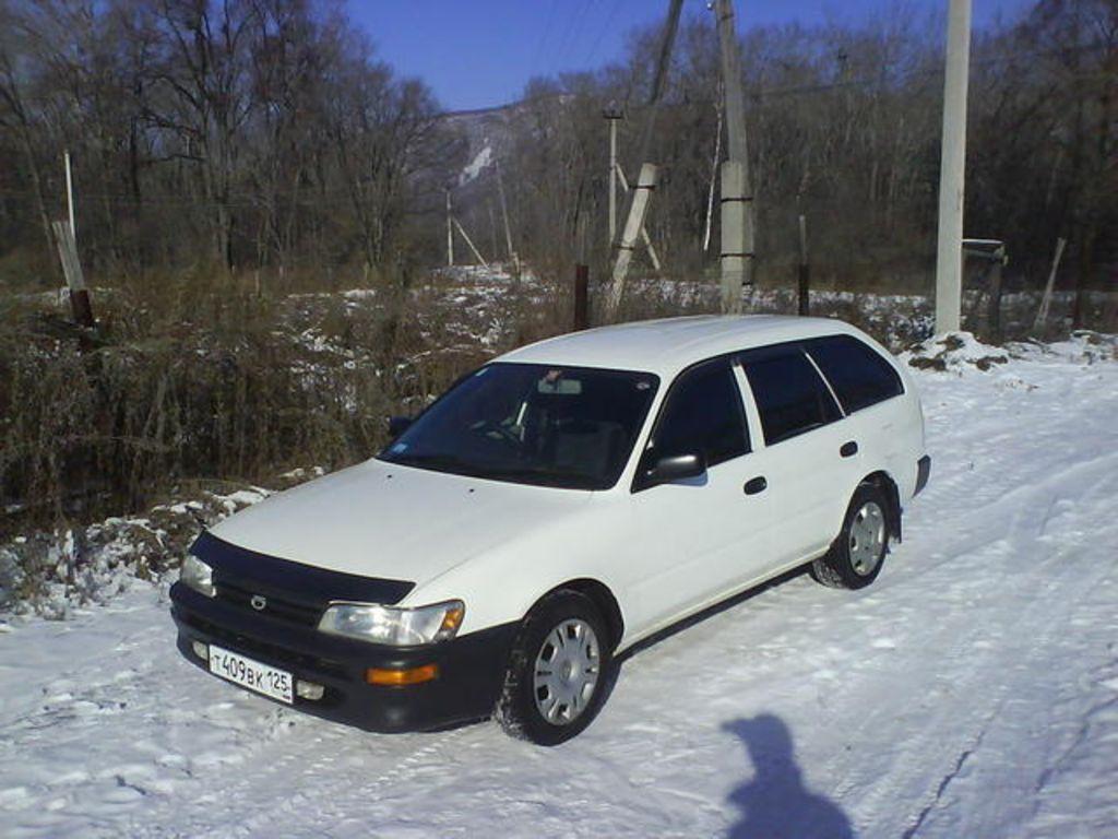 1998 Toyota Corolla Wagon Photos 1600cc Gasoline Automatic For