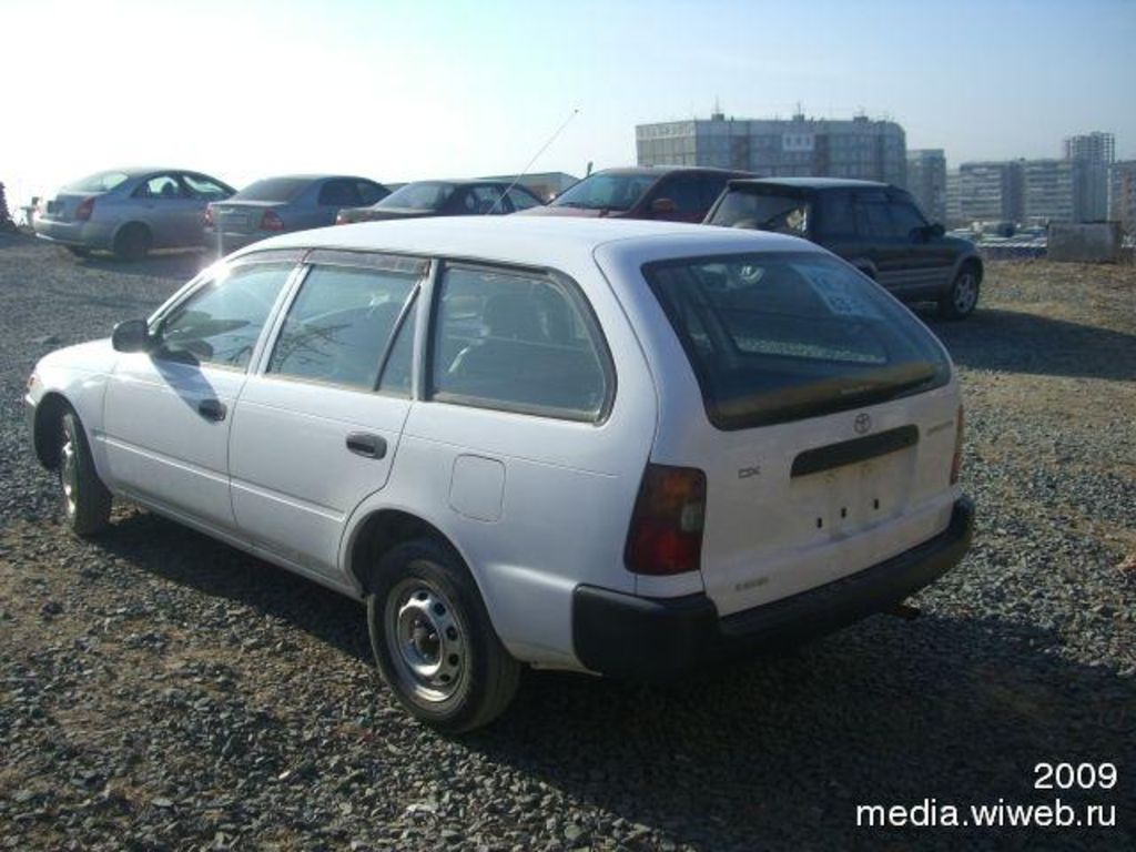 2002 toyota corolla wagon pictures 1600cc gasoline automatic for sale. Black Bedroom Furniture Sets. Home Design Ideas
