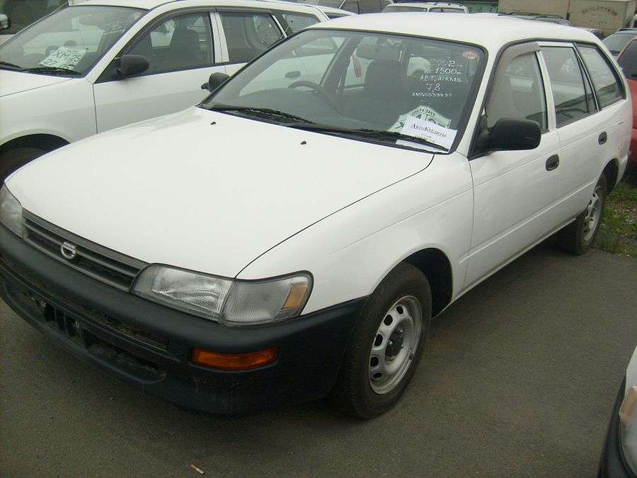 2002 toyota corolla wagon pictures 1500cc gasoline automatic for sale. Black Bedroom Furniture Sets. Home Design Ideas