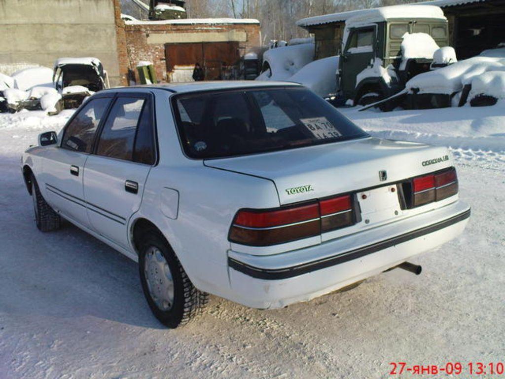 1988 Toyota Corona Pictures